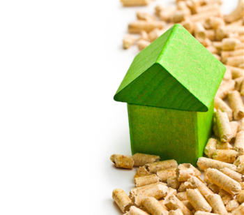 biomasa hogar