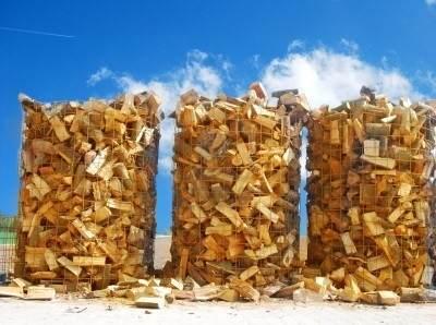 biomasa-troncos