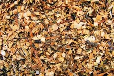 Biomasa, Veolia Biomasa
